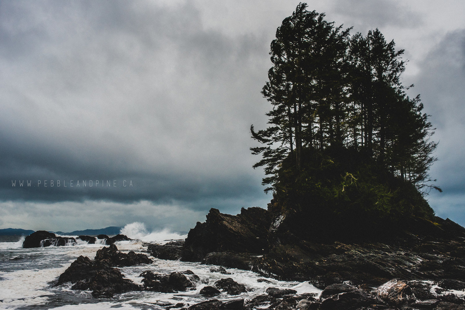 Botanical Beach, Port Renfrew BC //  Captured by Matt