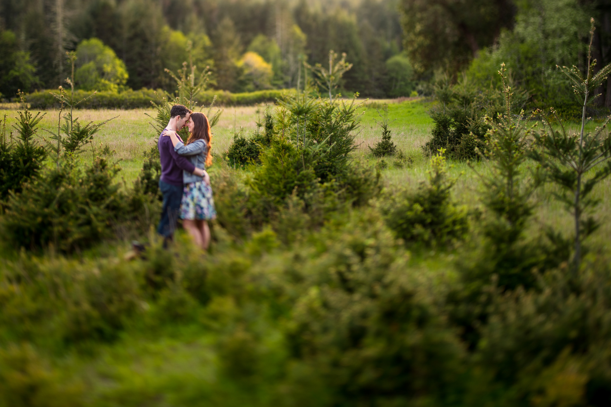 east-sooke-park-engagement-victoria-wedding-photographers-5.jpg