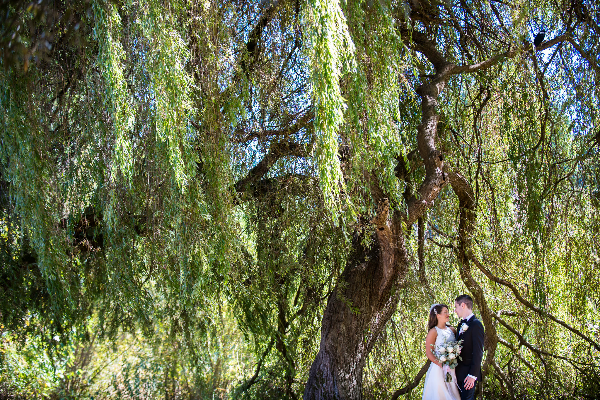 ubc-rose-garden-wedding-sage-bistro-wedding-bc-wedding-photographer-24.jpg