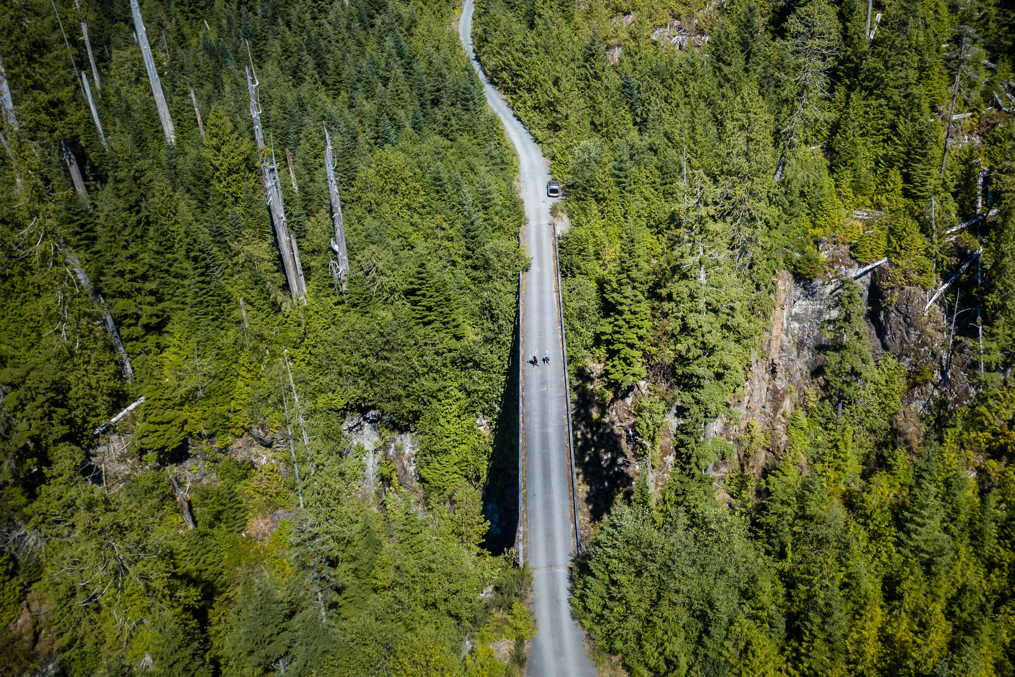 Travelling further up the coast to just outside Port Renfrew, where we had to get a shot using the drone of this bridge across a giant river valley. Hard to tell the perspective, but it's probably 100 feet down to the water below the bridge! That's us standing in the middle.