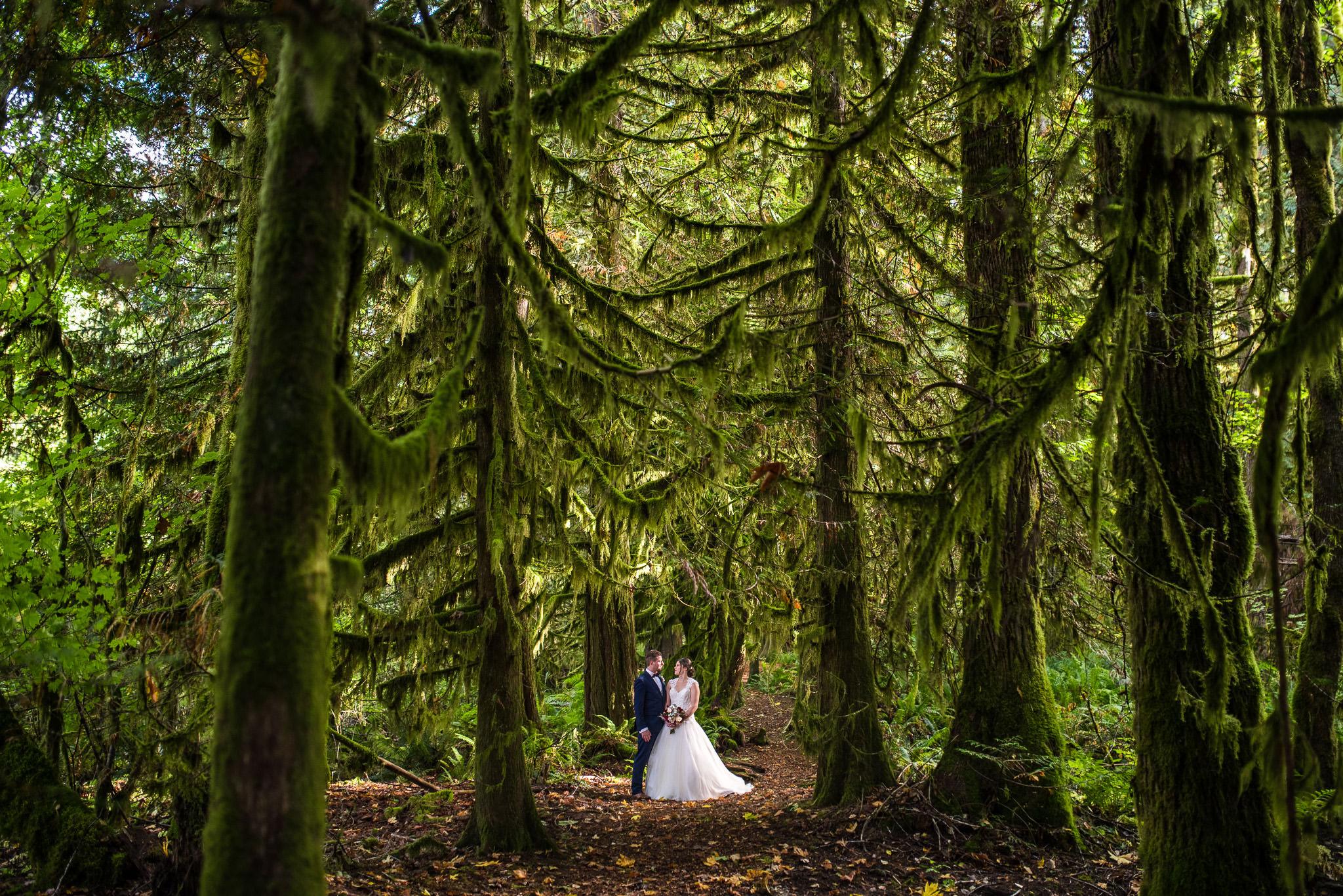 victoria-wedding-photographers-46.jpg