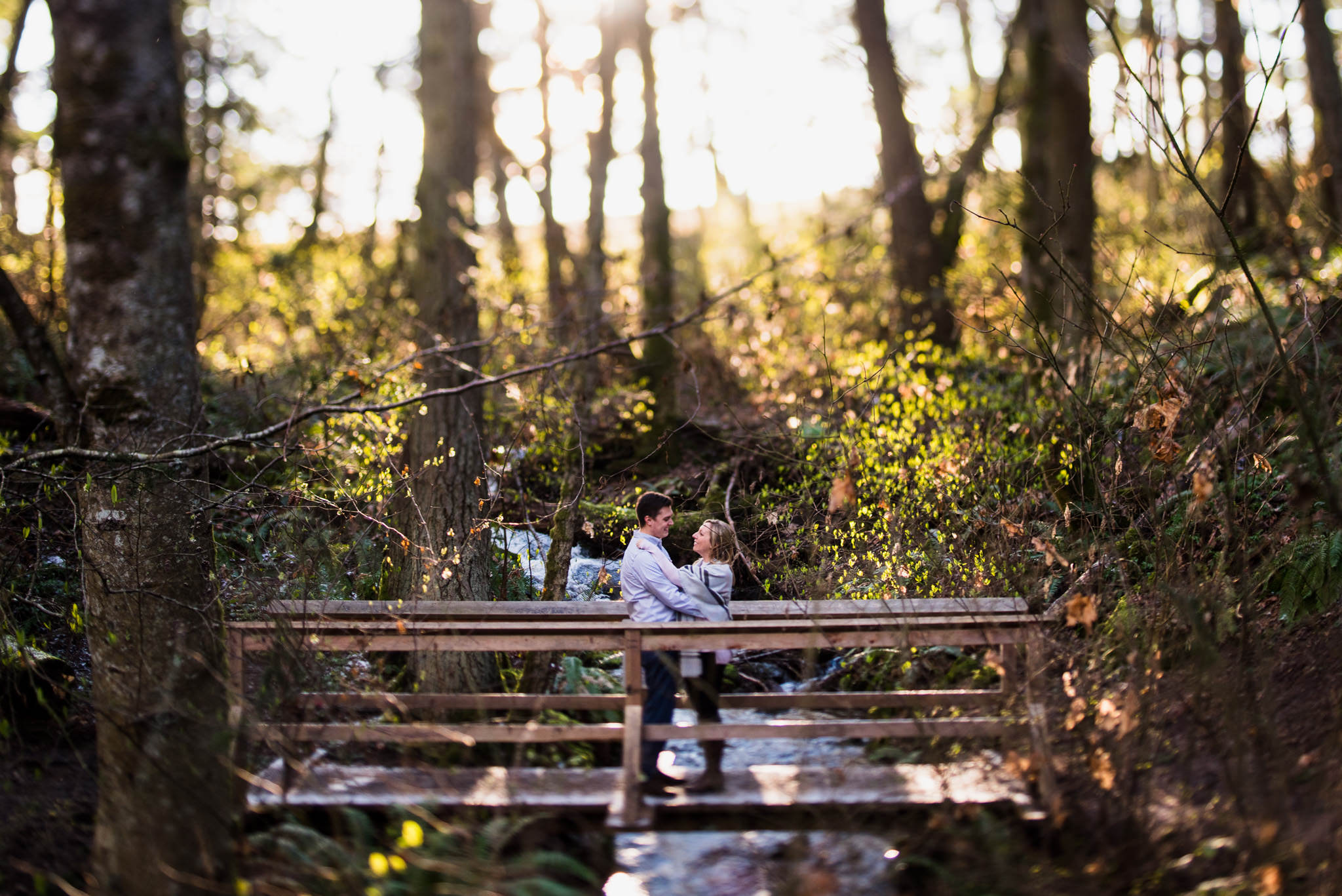 victoria-wedding-photographers-devonian-regional-park-engagement-3.jpg