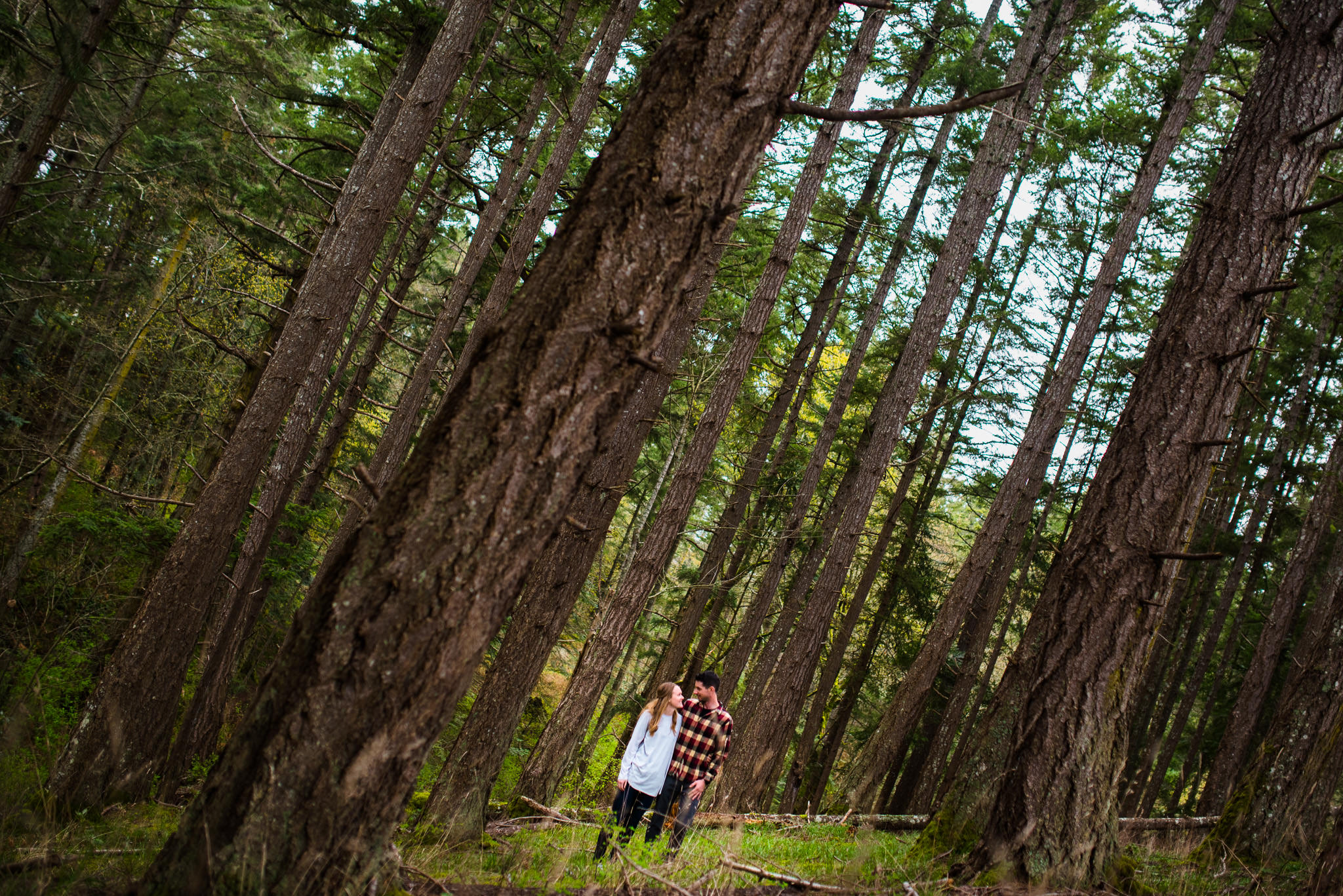 victoria-wedding-photographers-devonian-regional-park-engagement-photos-2.jpg