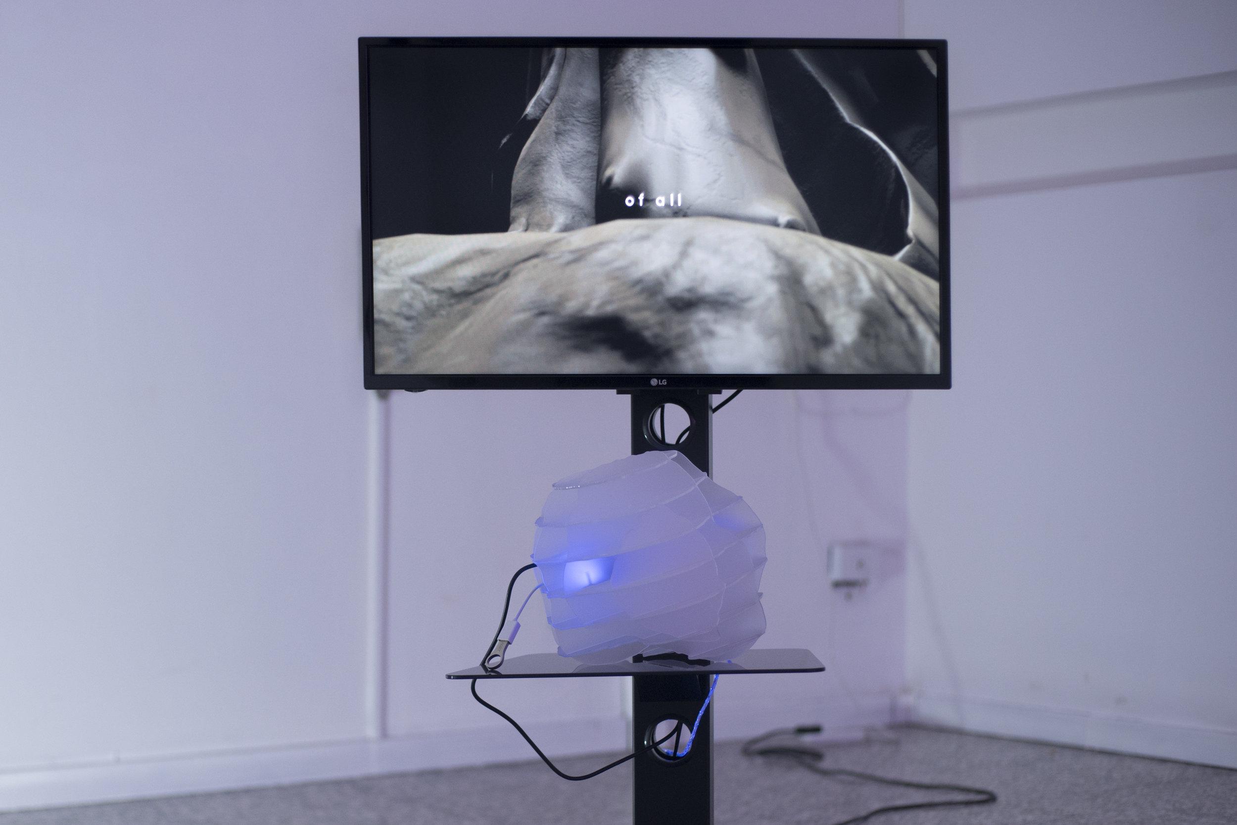 Anne De Boer, I am breathing, 2016, ongoing series, detalle