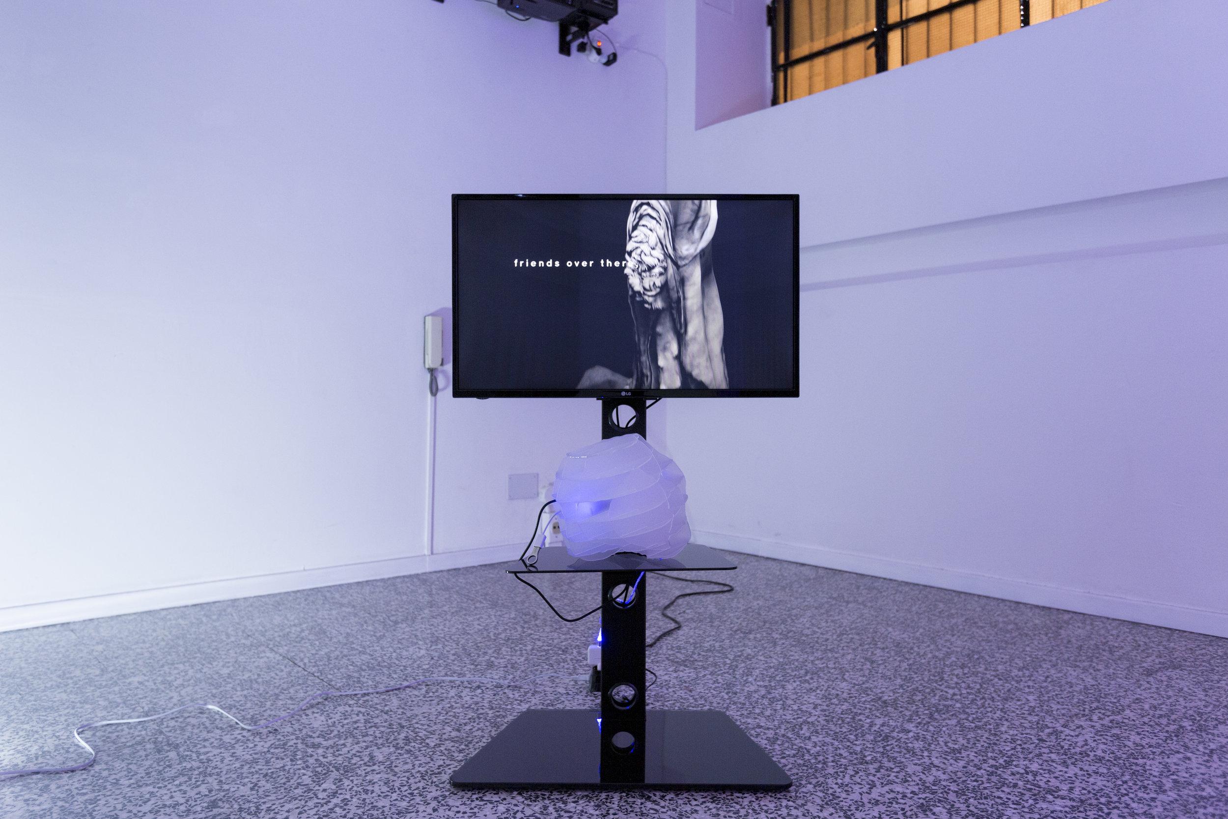 Anne De Boer, I am breathing, 2016, ongoing series, vista de instalación