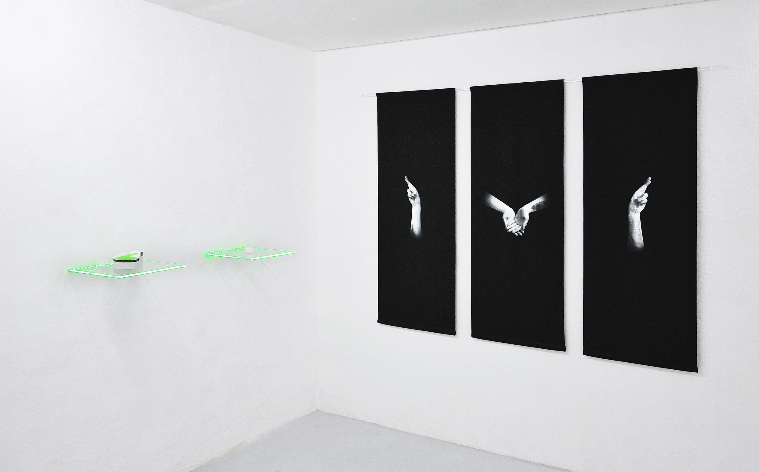 02 Tania Fiaccadori, Sea-Monkeys Cult, installation view, Dimora Artica, 2018.jpg
