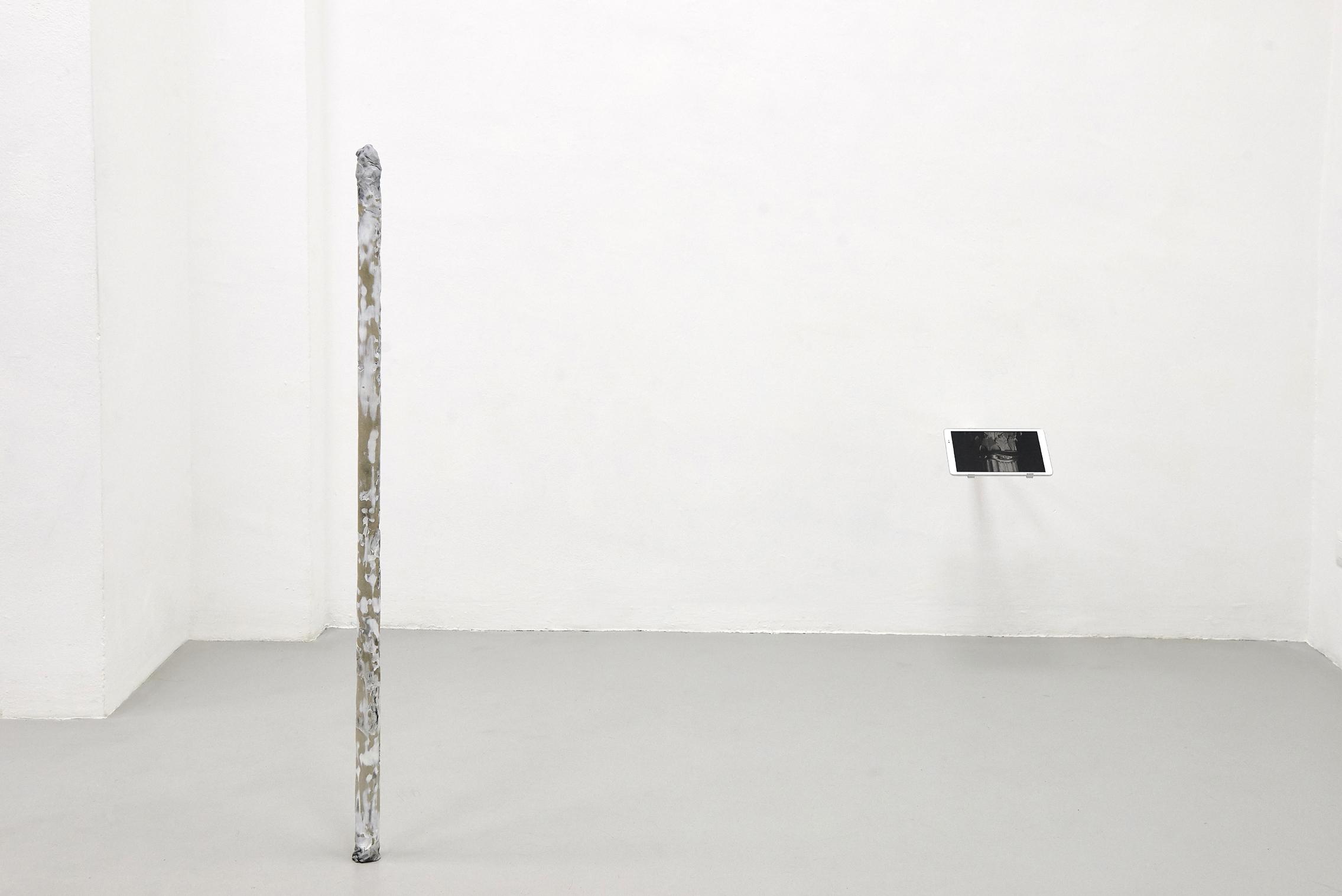24 Screen Tearing. Work by Agostino Bergamaschi. Dimora Artica (ph Michele Fanucci).jpg