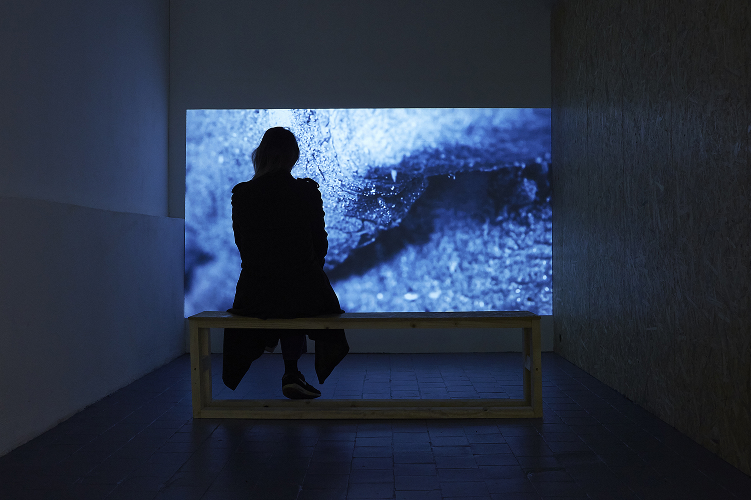 Installation view of the exhibition, 'Extra-Planetary Commitment', lítost gallery,