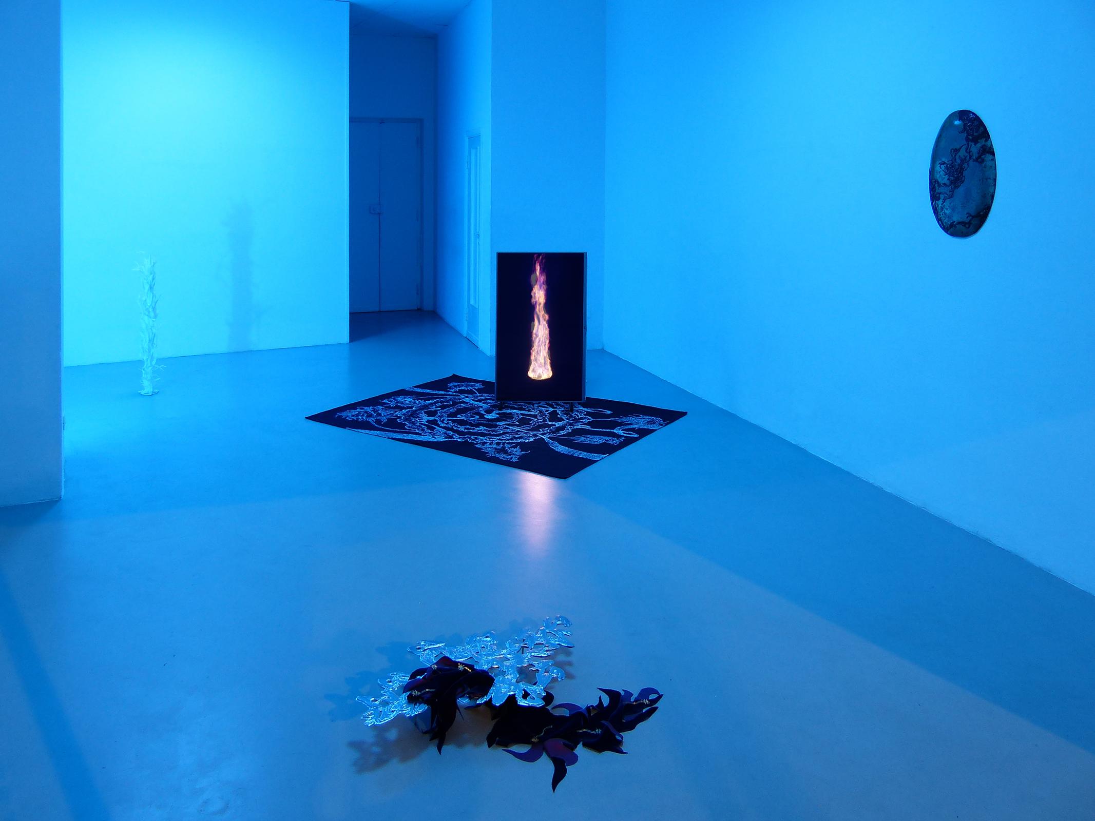 2 Paolo Brambilla - Fiordiluna, exhibition view, Dimora Artica.JPG