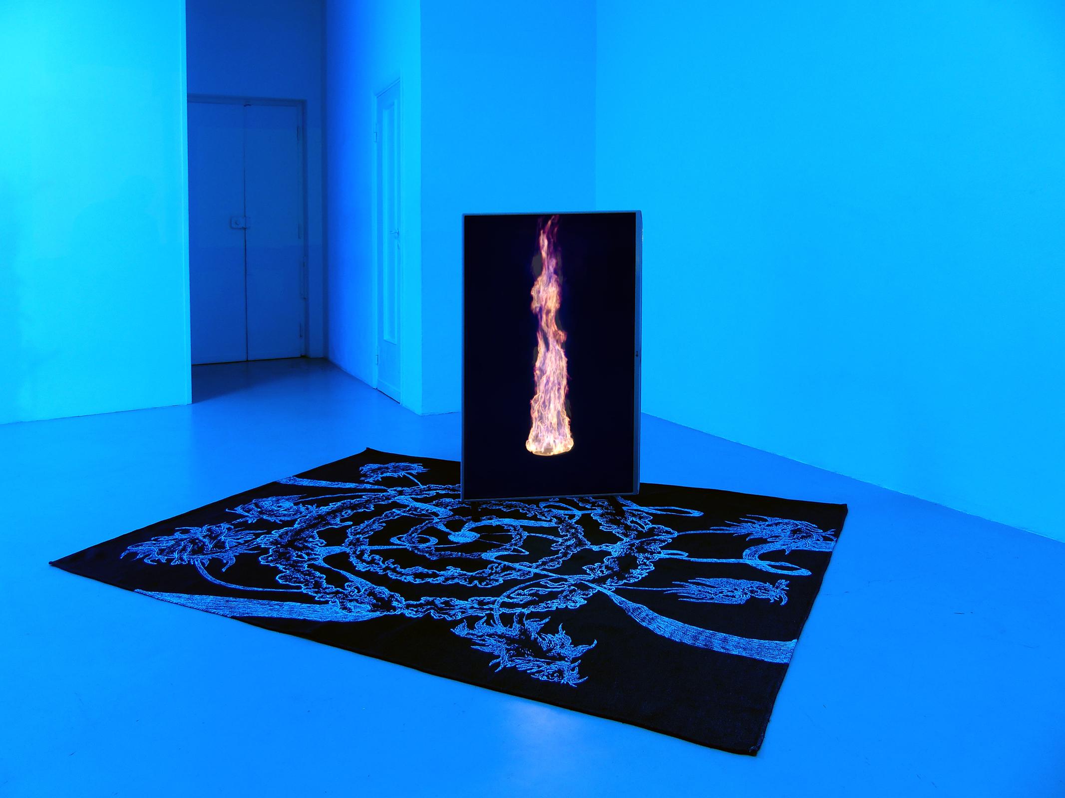 3 Paolo Brambilla - Fiordiluna, exhibition view, Dimora Artica.JPG