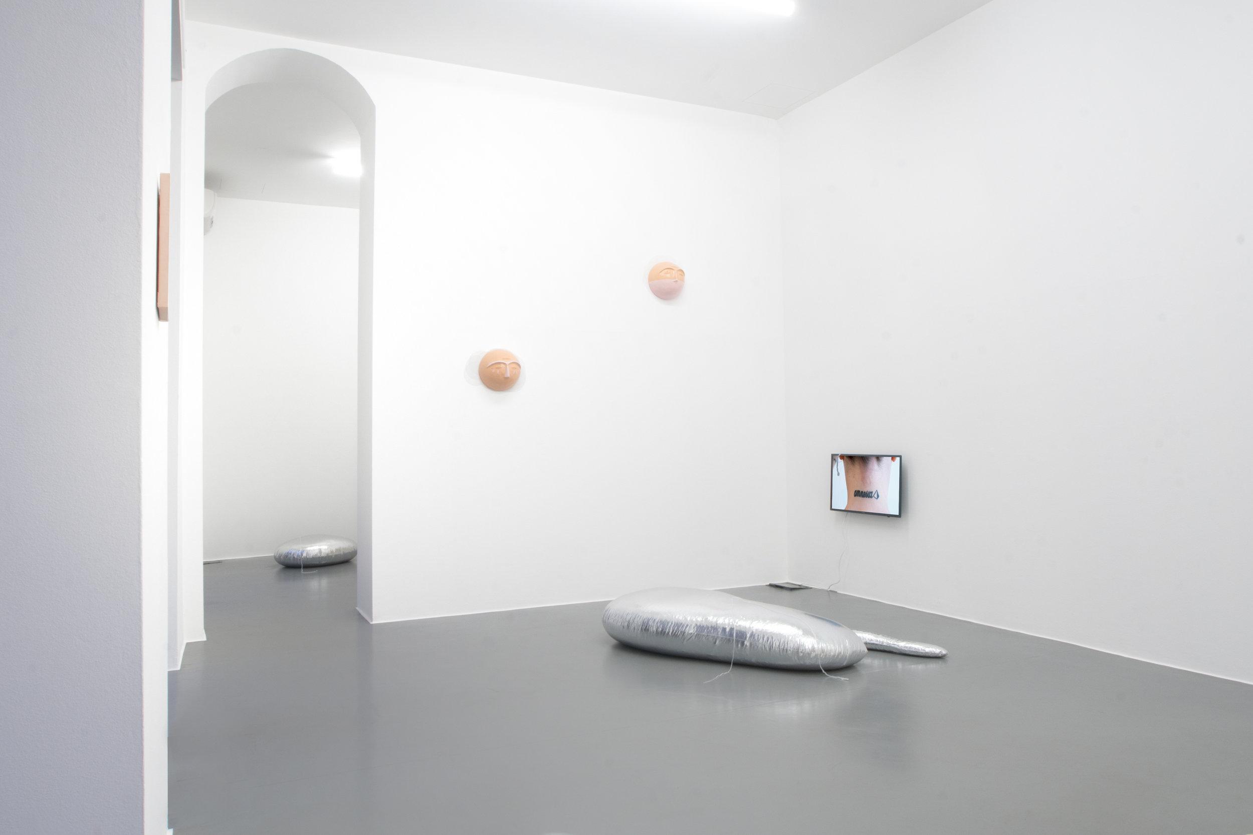 3 Gioia Di Girolamo - The Mating Season of Frenzy Breeze, Galleria Bianconi (ph Massimiliano Costantini).jpg