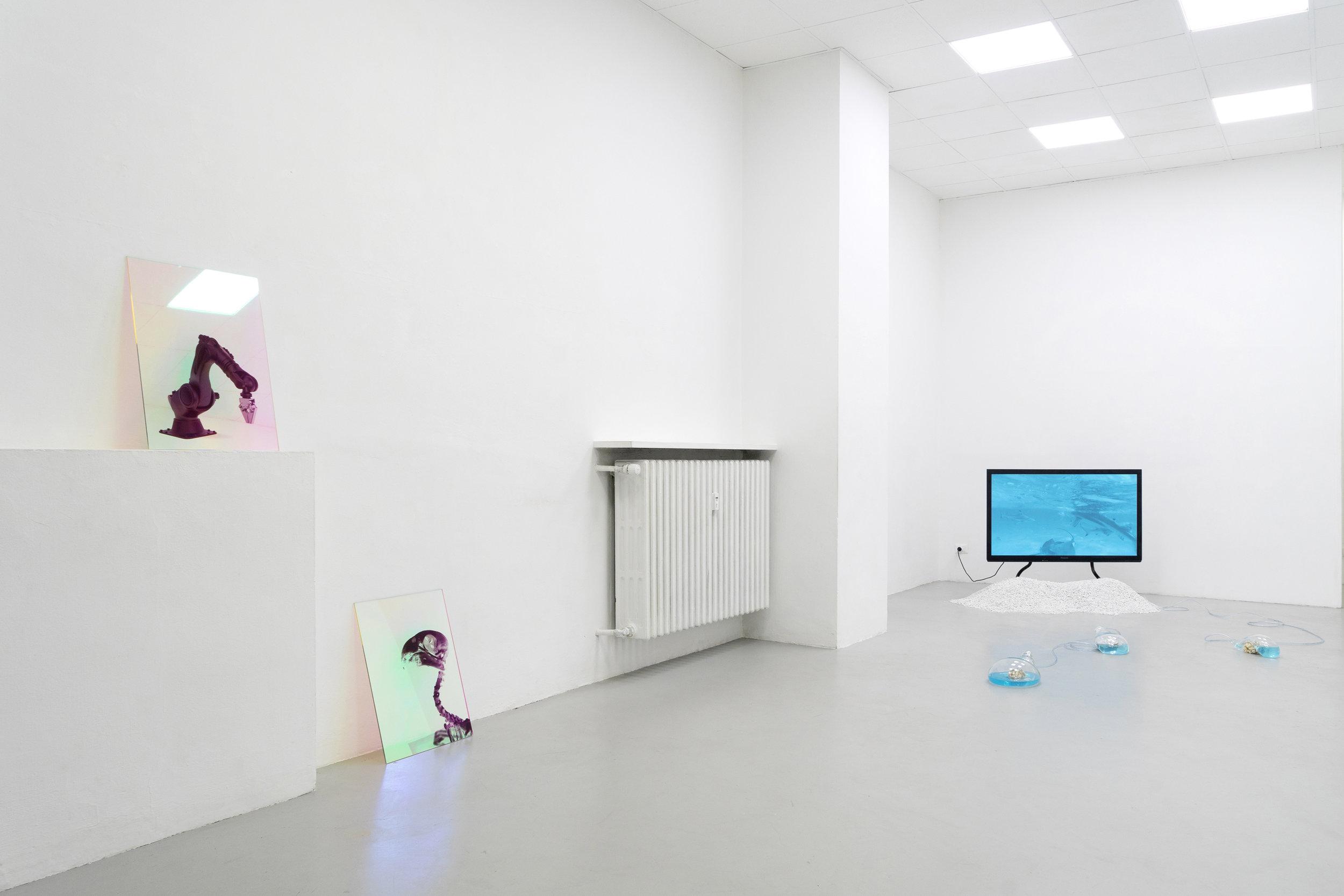 2 Paulo Arraiano, Sensorial Divinities. 2019. Exhibition view. Dimora Artica (ph Cesare Lopopolo).jpg