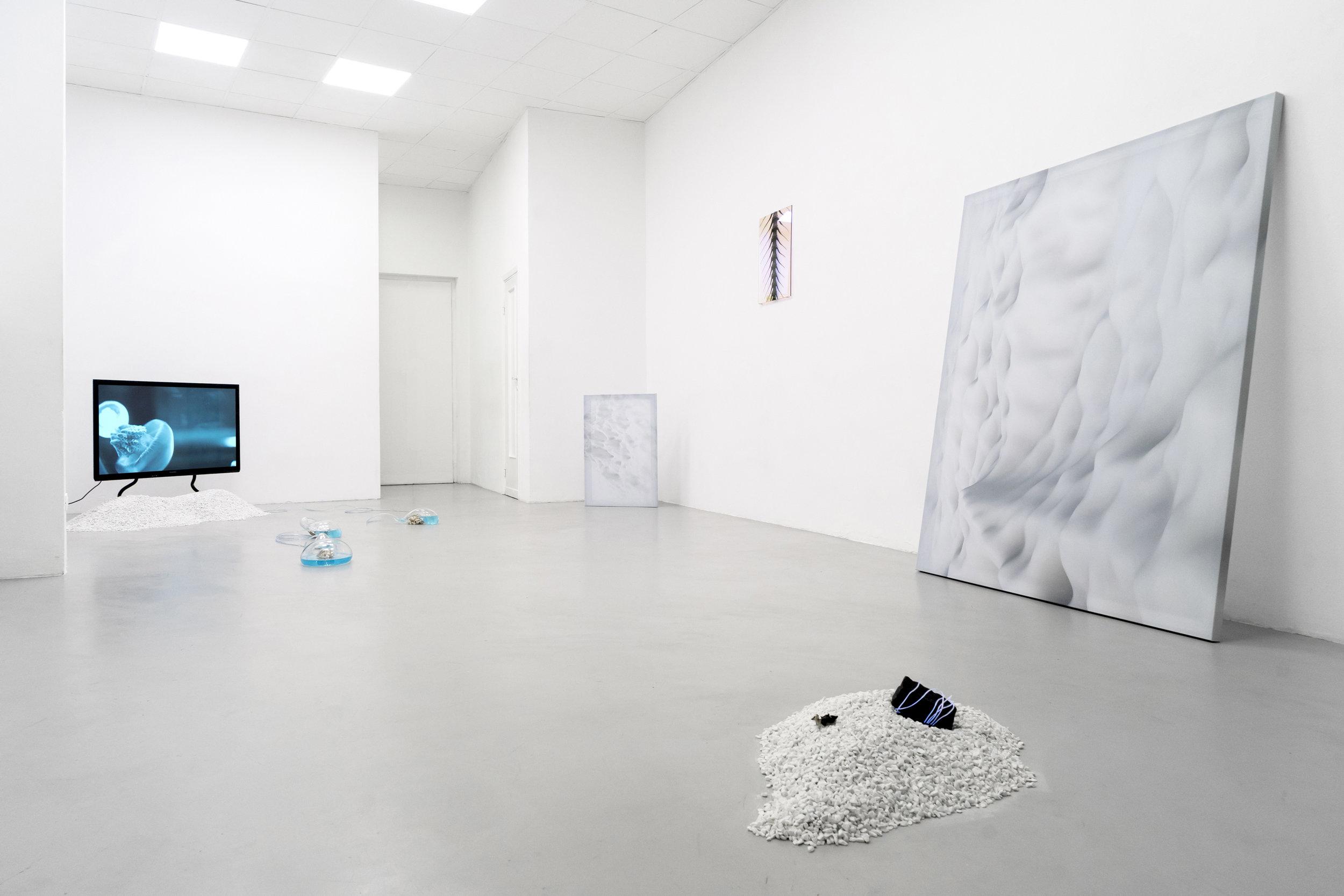 1 Paulo Arraiano, Sensorial Divinities. 2019. Exhibition view. Dimora Artica (ph Cesare Lopopolo).jpg