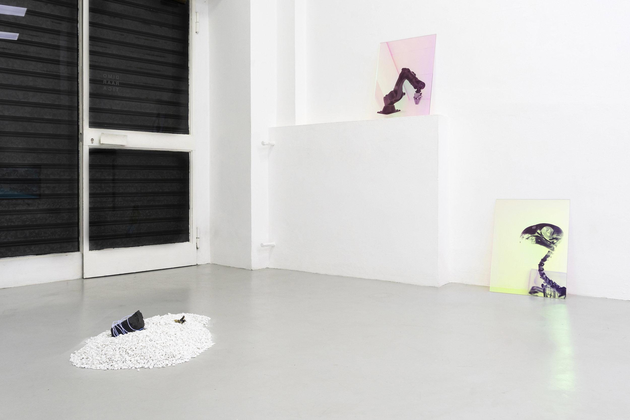 3 Paulo Arraiano, Sensorial Divinities. 2019. Exhibition view. Dimora Artica (ph Cesare Lopopolo).jpg