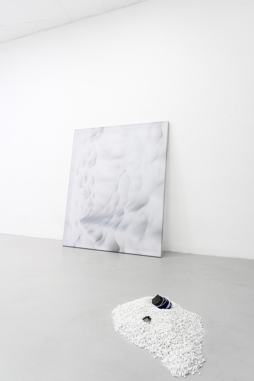 8 Paulo Arraiano, Sensorial Divinities. 2019. Exhibition view. Dimora Artica (ph Cesare Lopopolo).jpg