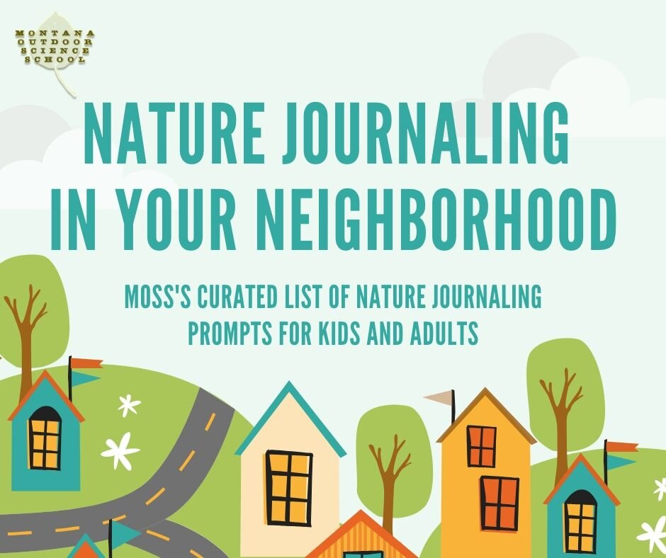 MOSS Nature Journaling.jpg