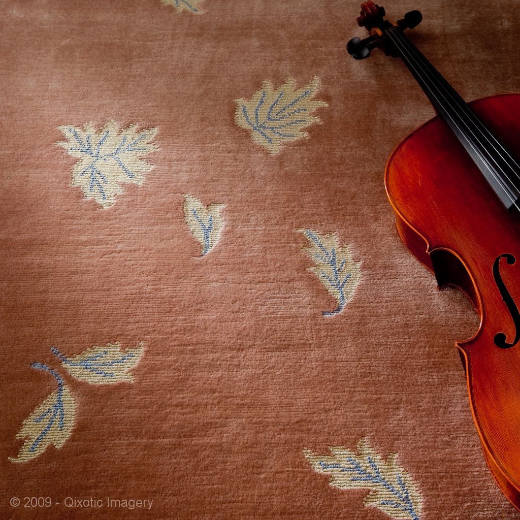 Aja's Carpet with Cello.jpg