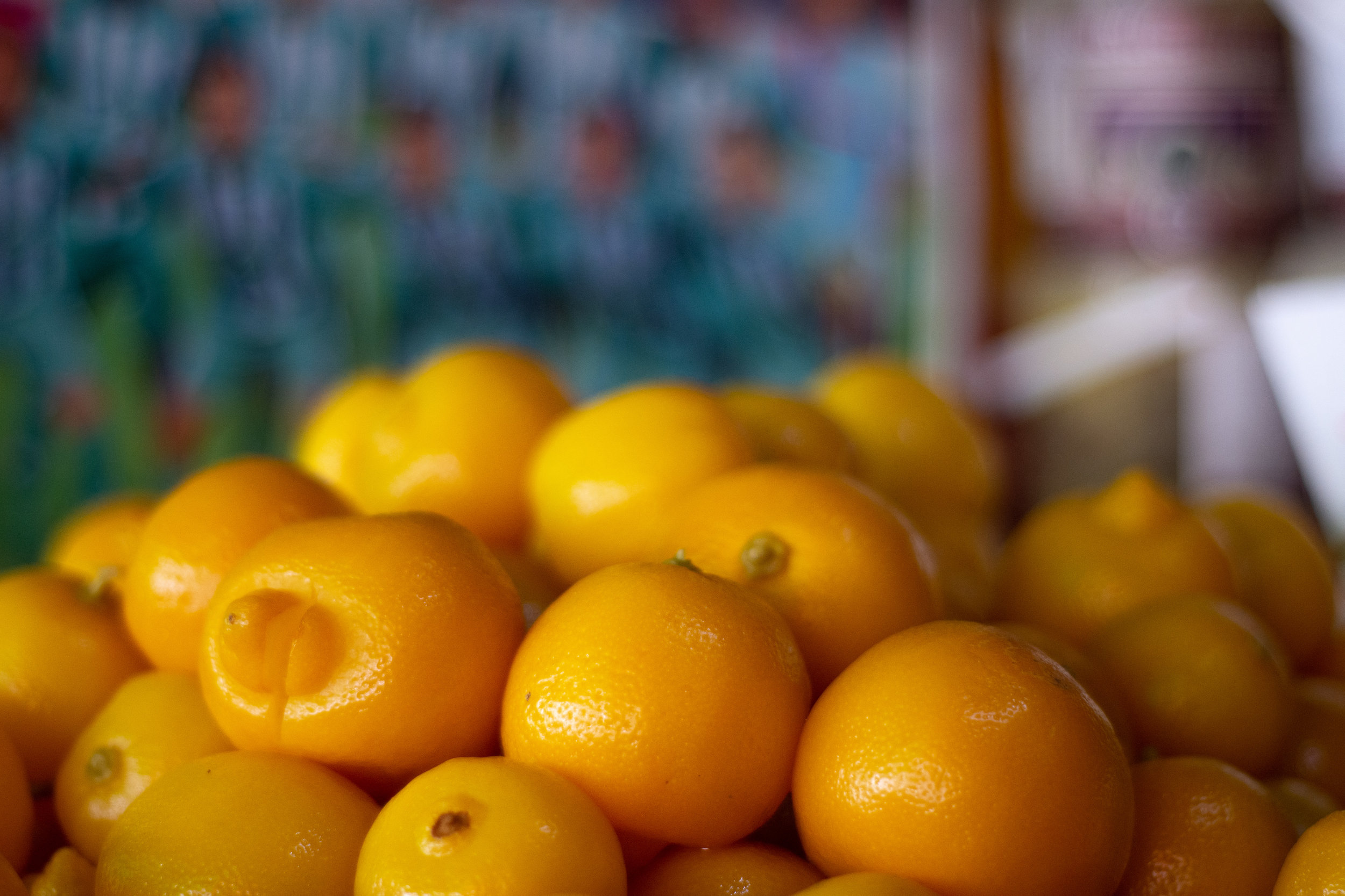 Ripe lemons, another staple ingredient in Moroccan cuisine