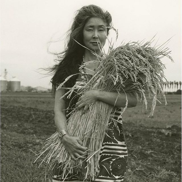 Rice and resilience. That is the name of a two part series just released on #PointofOriginPodcast. We're exploring the grain that connects us across cultures and lifetimes. Writer and cook Jasmine Lee (@_geosmin ) brought us the story of @koda_farms, a 100 year old family farm in Merced, California. Jasmine, whose ancestors worked as rice merchants in Hong Kong, asks if terroir is an expression of the land,  must it also account for the trauma inextricably bound to that land.  We are grateful to  Robin for sharing this difficult, essential story, and to Jasmine for asking all the right questions. Photo: Katsu Naito