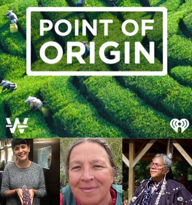 Part 2 in our series Rice and Resilience is the story of #manoomin, the sacred wild rice of the  #Anishinabek that grows on the #GreatLakes. Hundreds  of years ago  prophets told them that people with white faces would come across the ocean and they needed to leave their homeland and travel westward to the place where the food grew upon the water — or else, risk being destroyed. They followed those prophecies, and though it took a few hundred years, eventually made their way down the Saint Lawrence River and then into the Great Lakes region where they found wild rice.  The center portrait is of Barb Barton,  a biologist and author of Manoomin: The Story of Wild Rice in Michigan. She (and countless others)  have tirelessly advocated for the continuation of this tradition. Wasson Dillard (R) is an elder, basket weaver and keeper and teacher of  Anishinabek  language and culture. And finally @smaples Program Manager at American Indian Health and Family Services, who taught us all about the importance of #foodsovereignty.  We are so honored that they joined us and promise you will be gifted  immense wisdom from these women if you listen.  Shoutout to @foodlabdetroit  @w.t.p.o.c we the people's growers association.  We've been busy! #PointofOrigin episode 6 coming this week. If you've enjoyed it, we hear nice reviews help the show and are encouraged to encourage your to leave one. 🙏🏾💗
