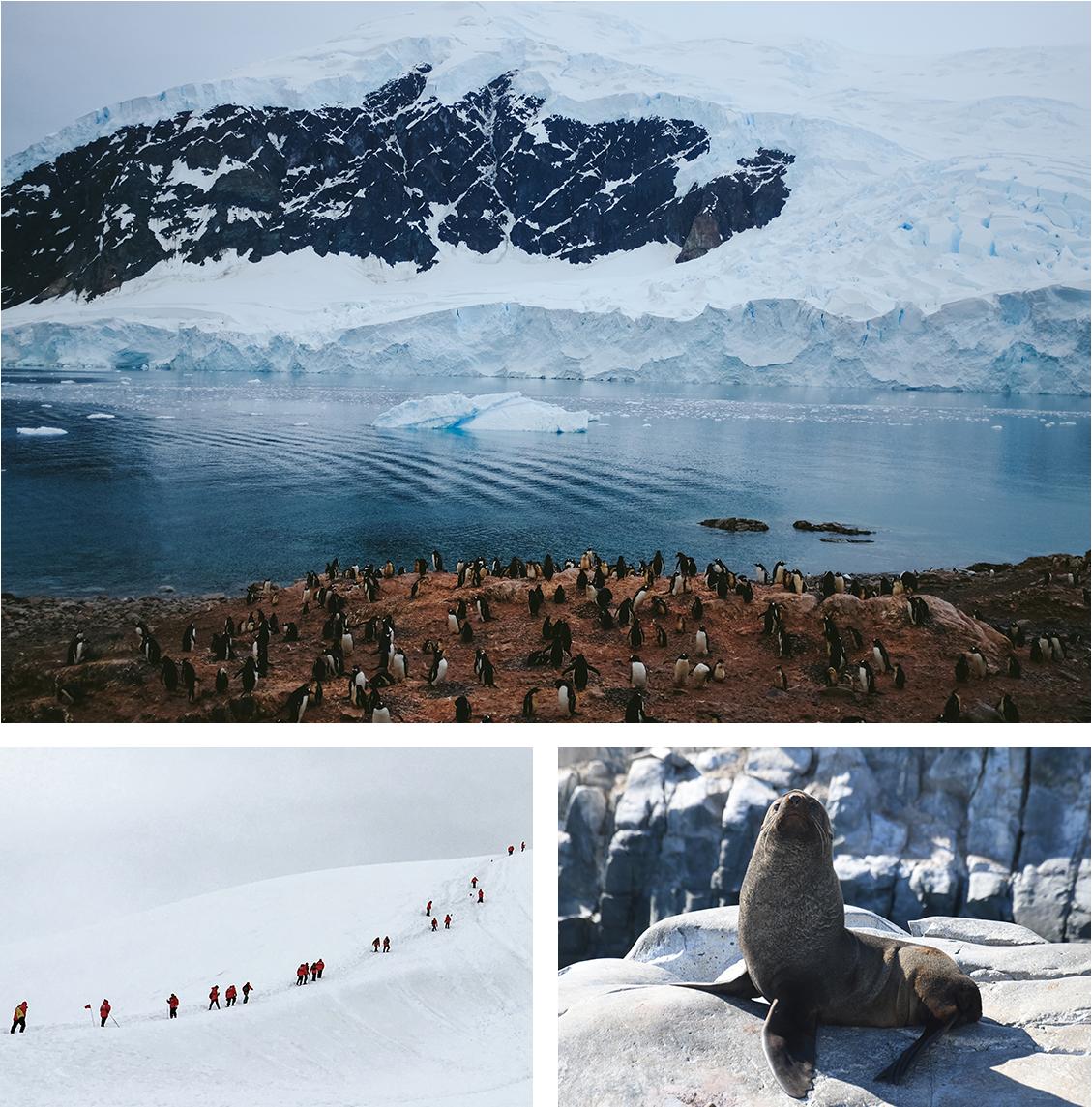NA_Apr17_Antarctica_IMGComp07.jpg