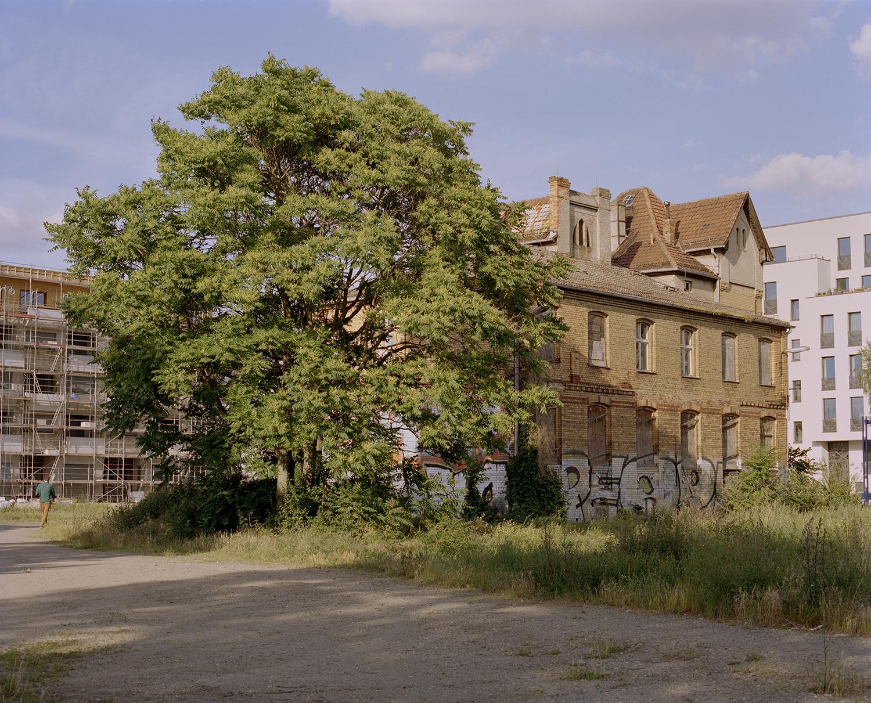 Baum Haus II