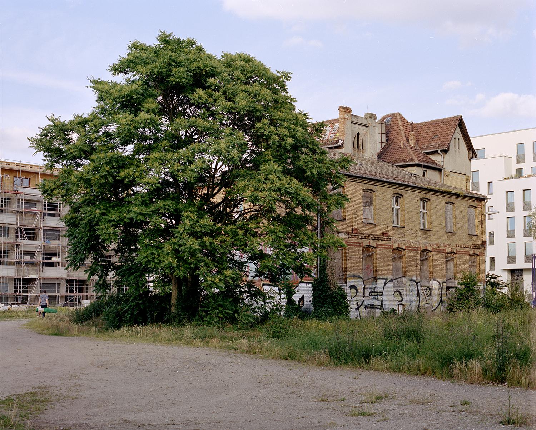 Baum Haus I