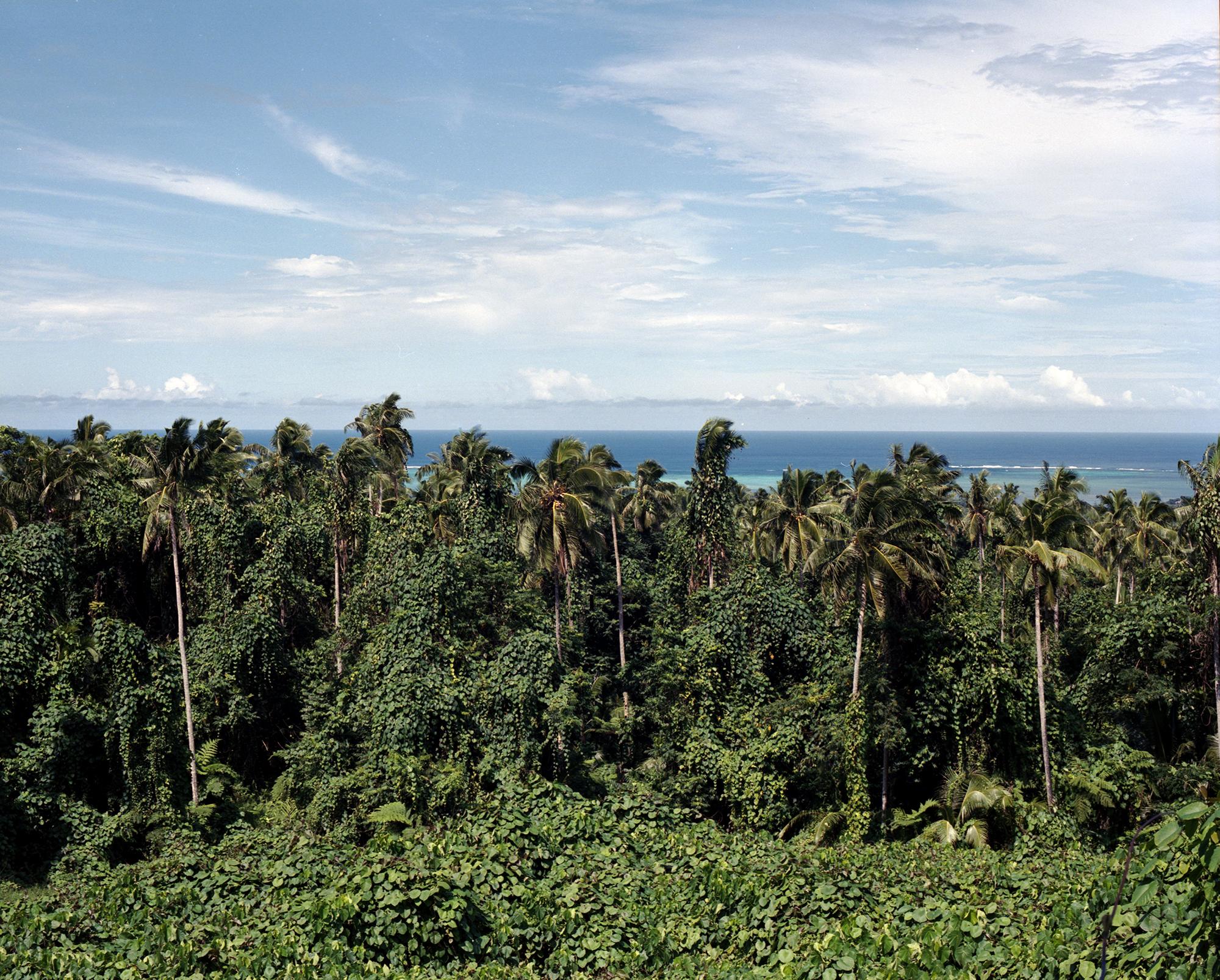Pulemelei Mound, Palauli, Savai'i, 2019