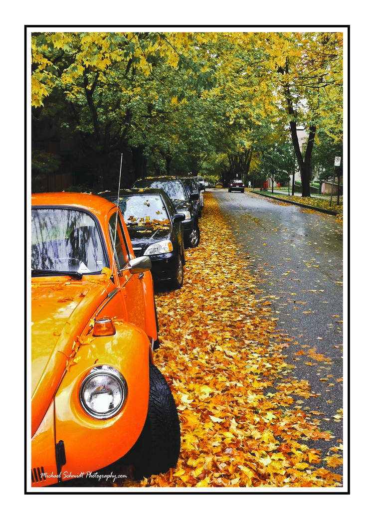 West End Fall Day Full Color white Border_resize.jpg