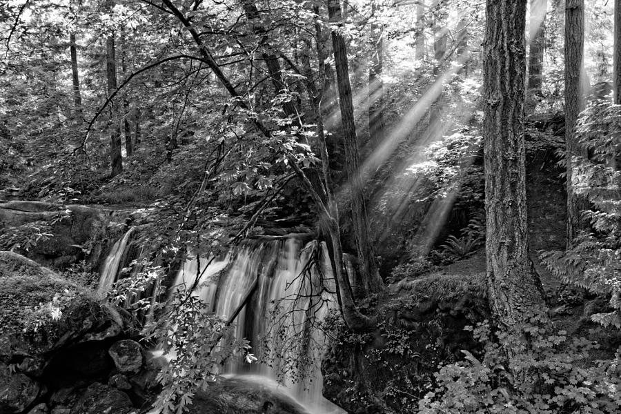 2014-07-01 Washington Bellingham Whatcom Falls -3