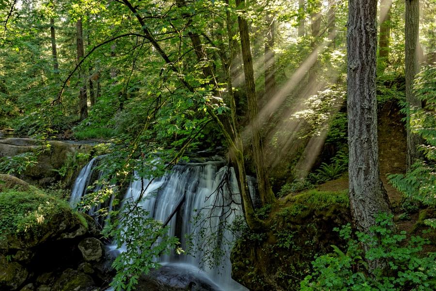 2014-07-01 Washington Bellingham Whatcom Falls -2b