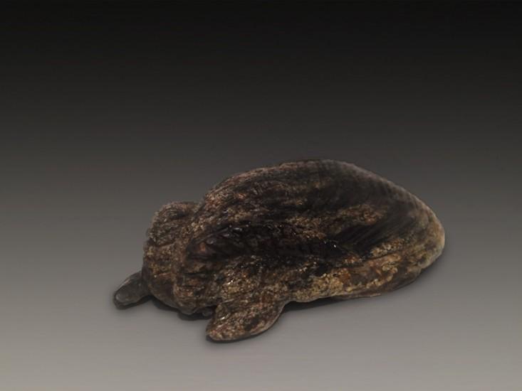 "RESPLENDENT MOTH, Carved Field Stone, 1 1/2 x 4 1/2 x 2 1/2"""