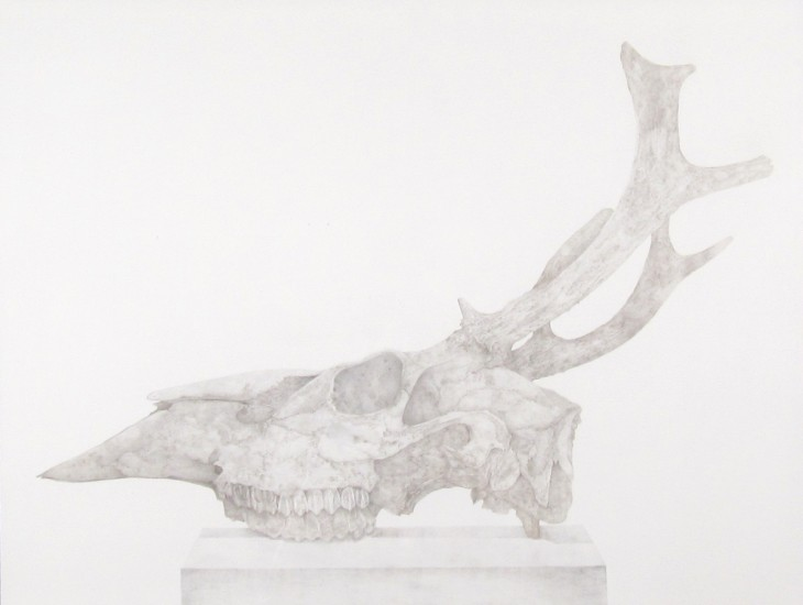 "REMAINS III, Silverpoint on Coated Bristol Board, 27 x 20"" framed 30 1/2 x 36"""