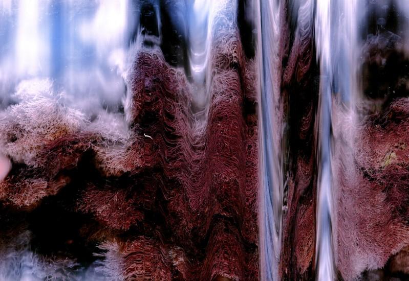 """Nathaniel Stern,SOFT, Digital Print on Metallic Paper, 8 1/4 x 12"""""""