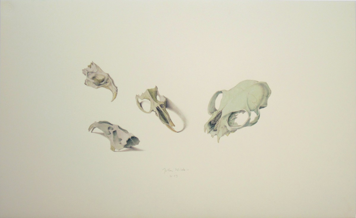 john-wilde-assorted-skulls-paper-14.5x23.25-e.jpg