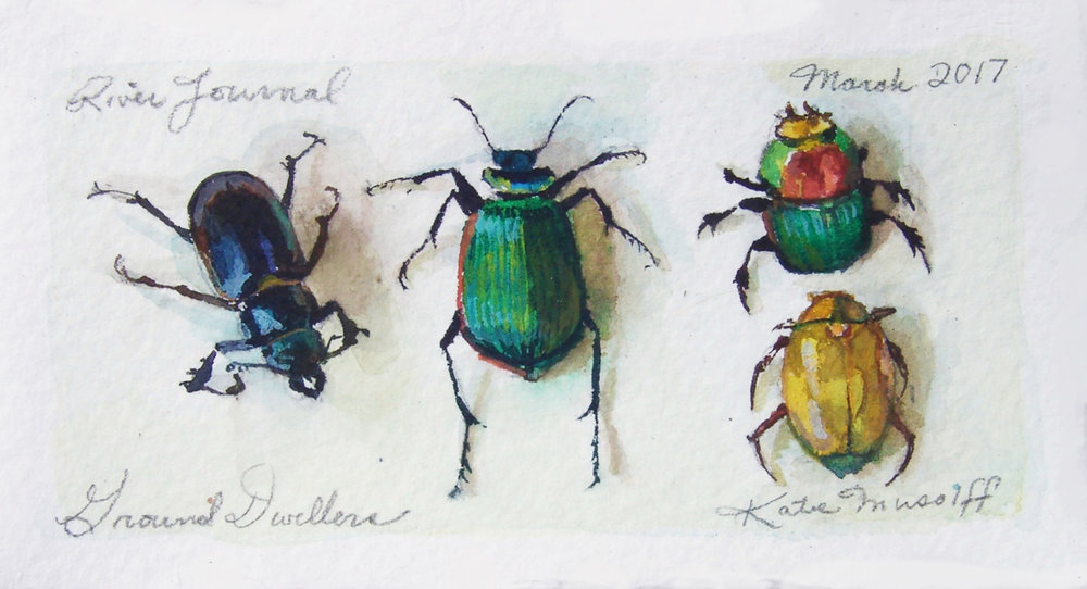 katie-musolff-ground-dwellers-watercolor-on-paper-3x5.5-framed-6.5x9-e.jpg
