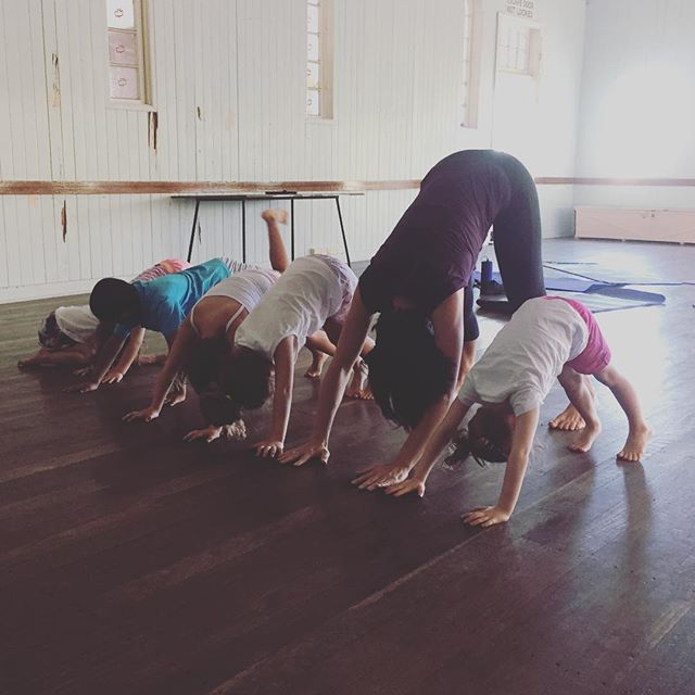 Would your 8-12yr old like to try Yoga tomorrow afternoon with like-minded children? We still need numbers to make up our Pre-Teen class at 3:30pm at Newmarket so please message me if you'd like to register your interest! We'll be breathing, moving, challenging ourselves and having a lot of fun at the same time! Look forward to hearing from you 🙏🏻 #kidsyoga #breathing #asanas #games #meditation #relaxation #mindfulness #fun