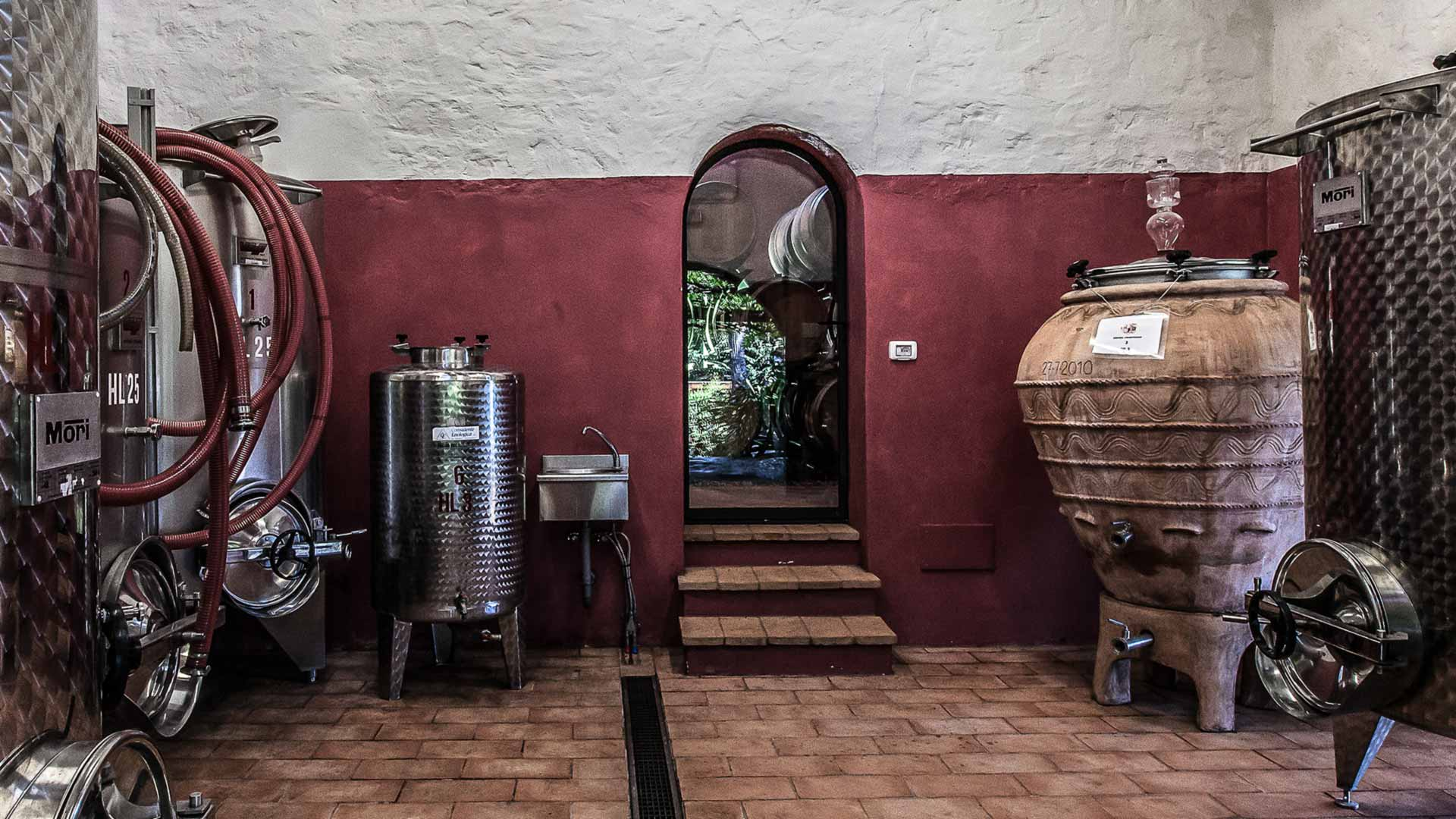 Making wine in terracotta