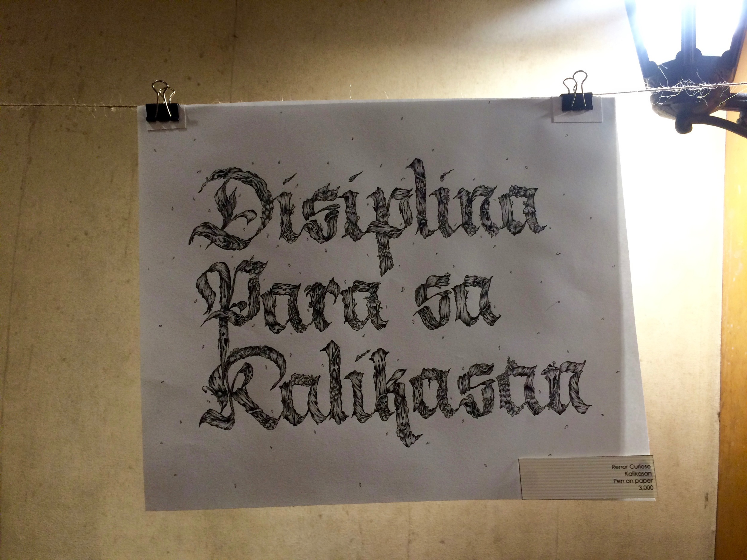 Disiplina para sa Kalikasan by Renor Curioso
