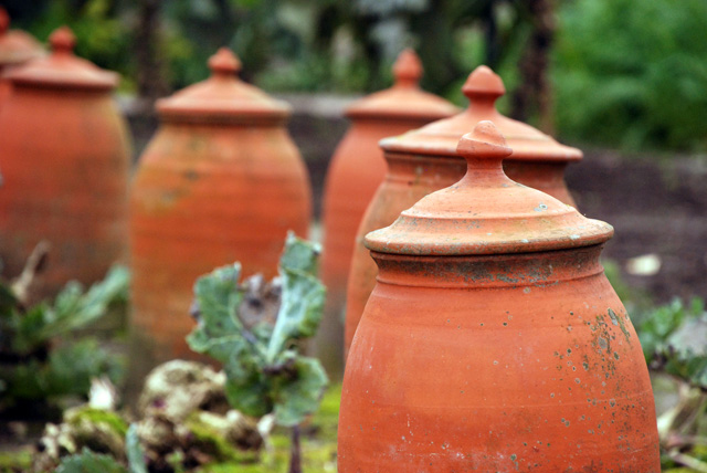 Terracotta-cloches-at-Hotel.jpg