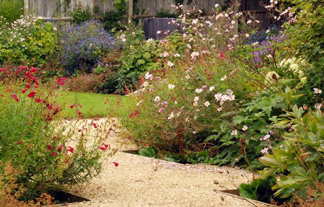 Garden-in-leatherhead-one-y.jpg