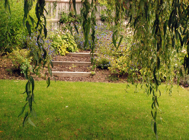Informal-steps-and-willow-t.jpg