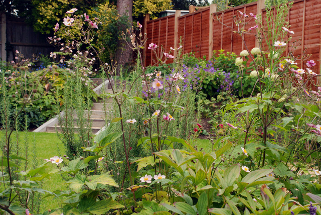 Planting-in-Leatherhead-gar.jpg