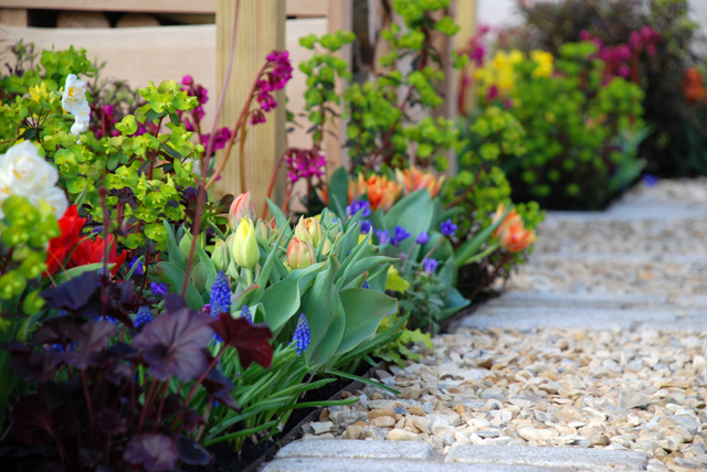 Spring planting A Front Garden for Victoria Park Mazda Lisa Cox & SH Landscapes 2015 Cardiff.jpg