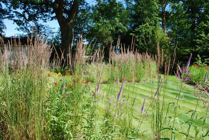 Informal-garden-with-perenn.jpg