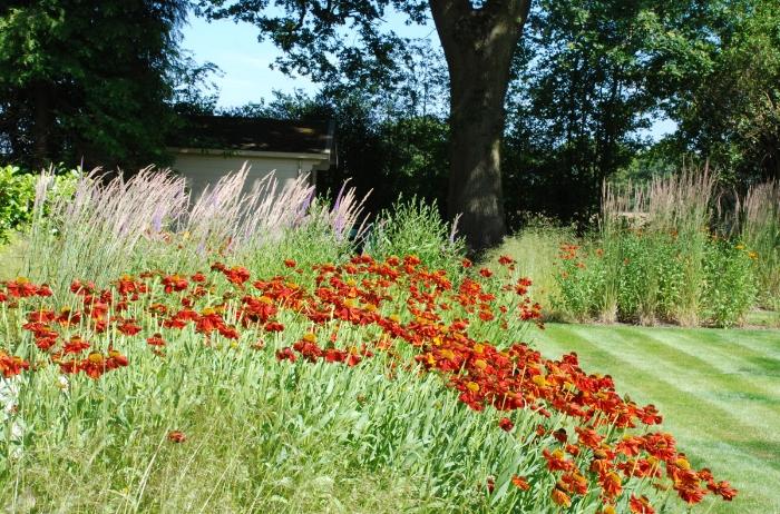 Large-family-garden-Lisa-Co.jpg