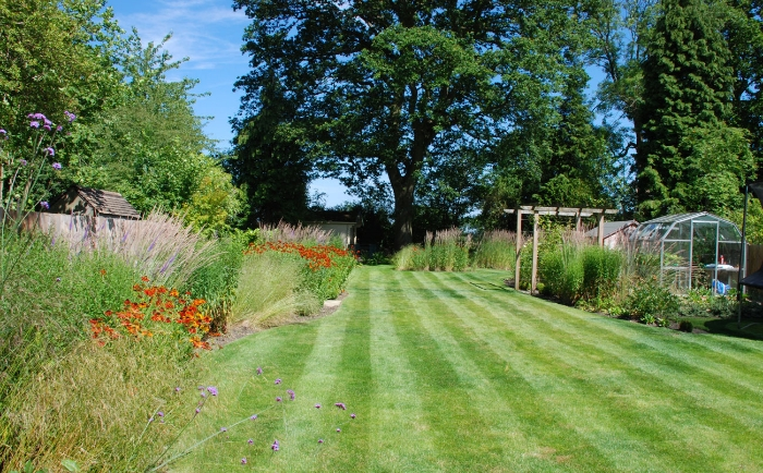 Large-lawn-area-Lisa-Cox-Ga.jpg