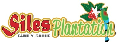 Logo Siles.jpg