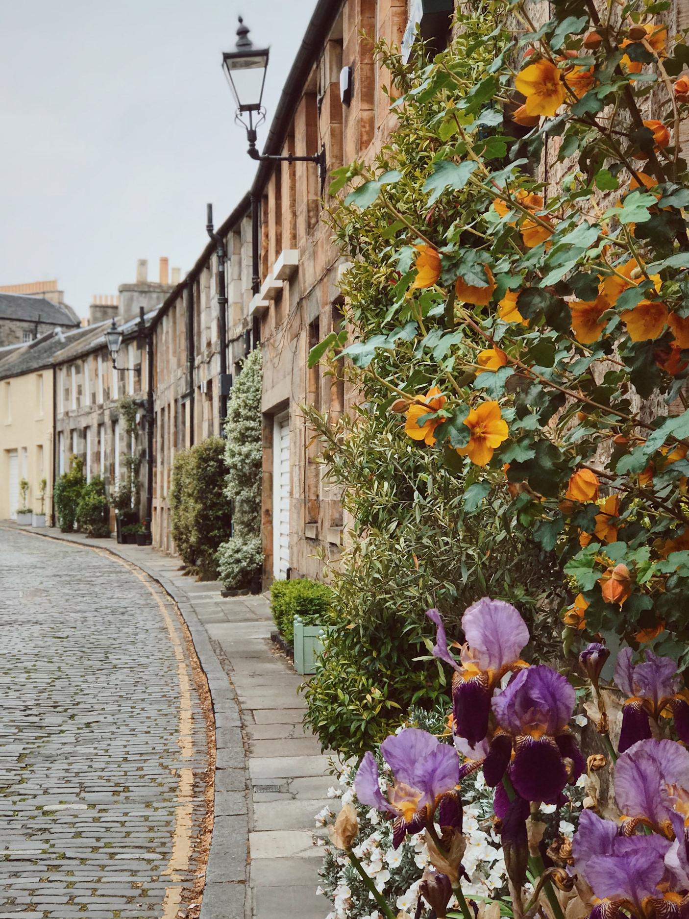 floral streets in Stockbridge, Edinburgh
