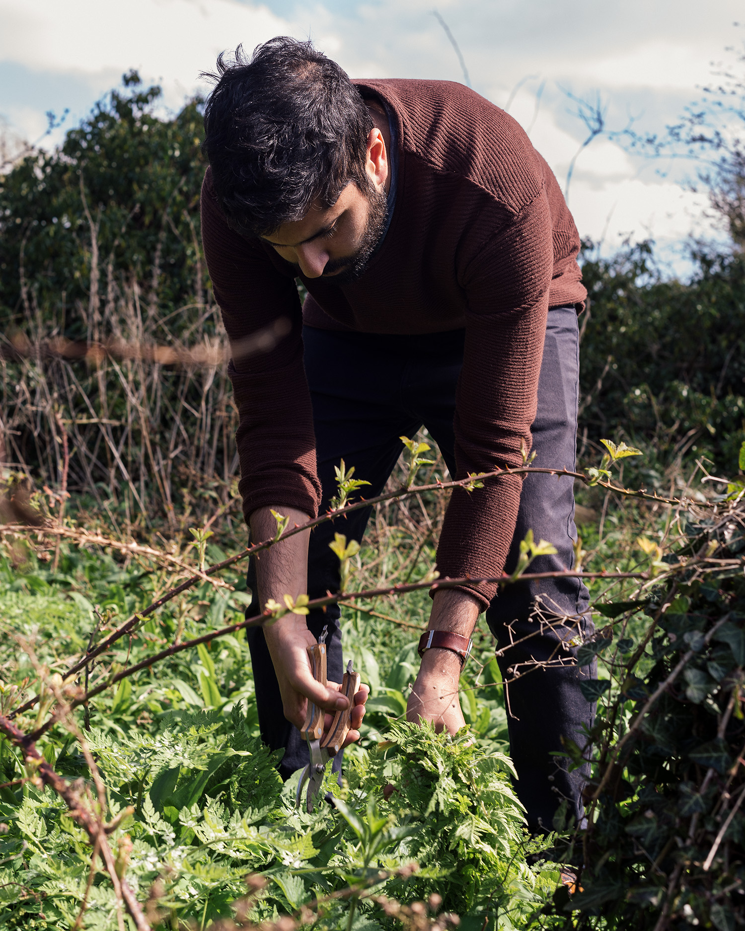 Miran Chauhan foraging sweet